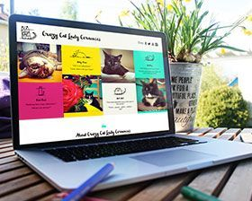 Website-new-orleans-design-pet-company-cats-layout-homepage-thumb  large