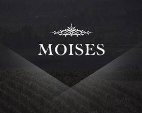 Moises-wines-marketing-website-design  large