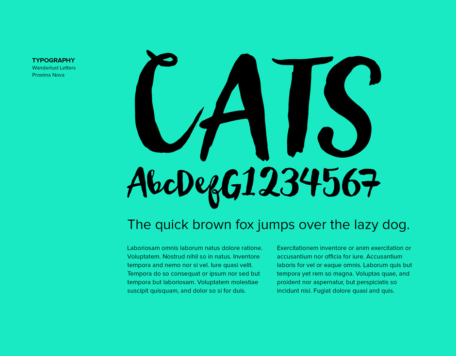 Branding-font-selection-graphic-design-pet-company-new-orleans-2