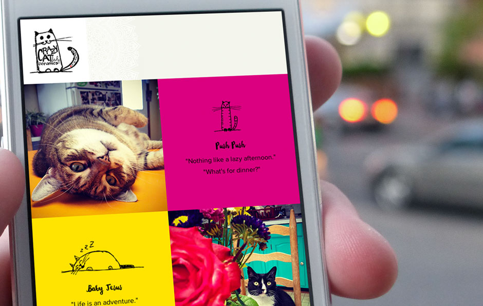 Mobile-design-website-new-orleans-cat-company-pets-home-2