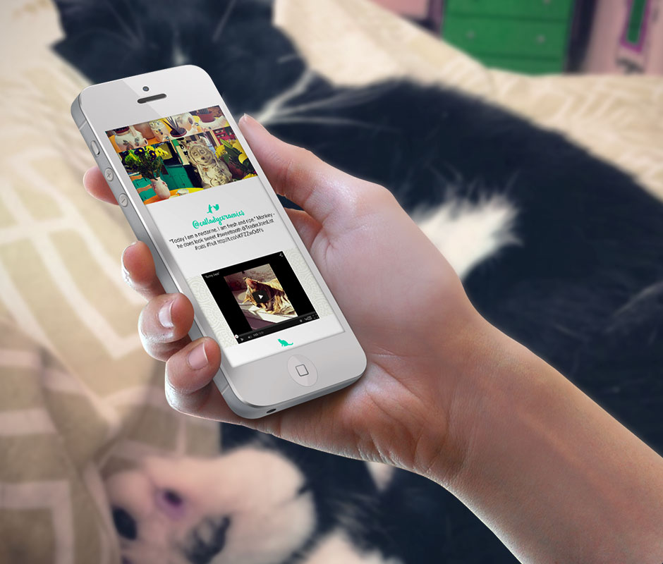 Mobile-website-design-iphone-layout-new-orleans-pet-company-2
