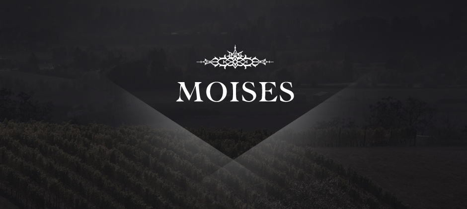 Moises-wines-branding-logo-vineyard  large