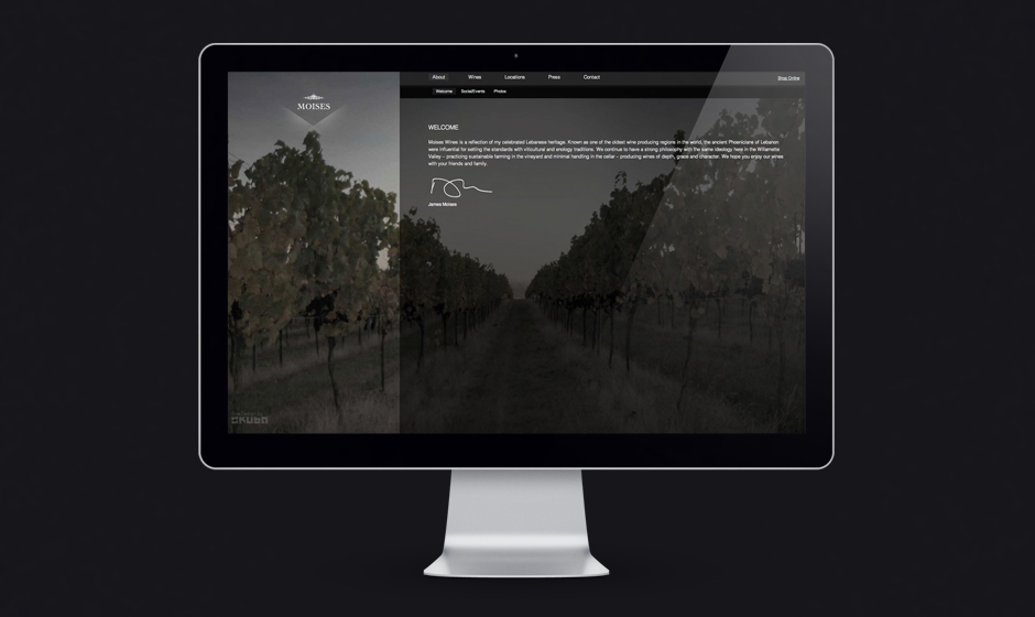 Moises-wines-website-welcome-vineyard  large