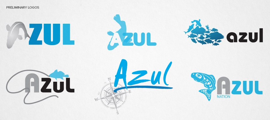 Azul-nation-preliminary-logos  large